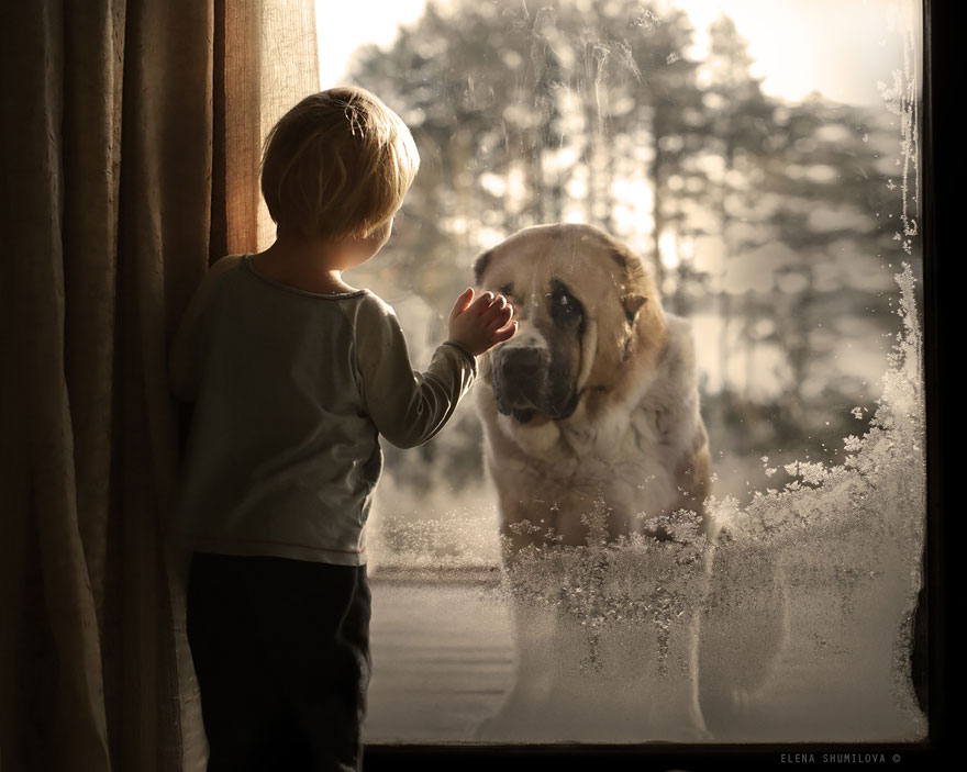 animal children photography elena shumilova 2 19