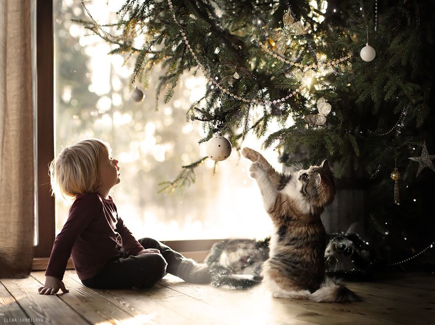 animal children photography elena shumilova 2 23