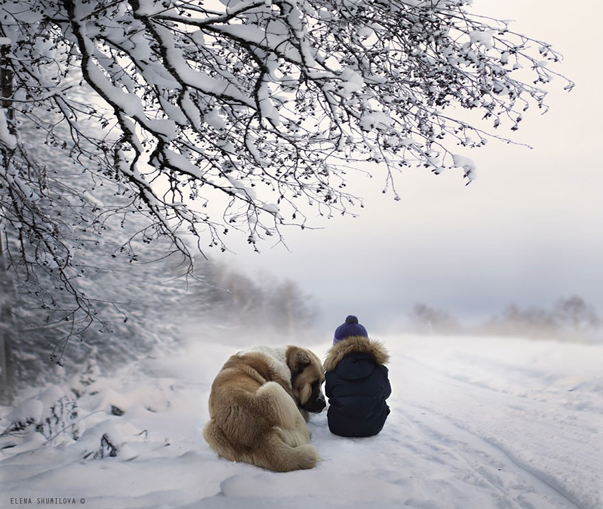 animal children photography elena shumilova 2 24